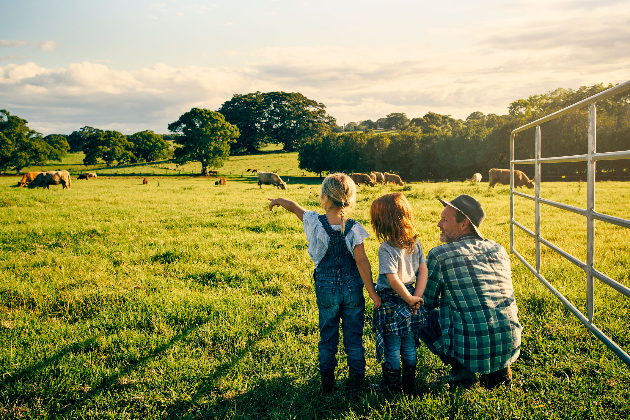 Farmer and family looking at livestock on an Australian farm